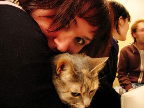Thumbnail: Cat and kitty