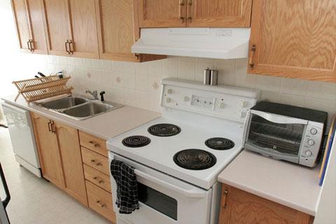 Kitchen: stove view
