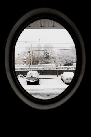 Thumbnail: A winter scene out my window