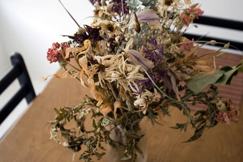 Thumbnail: Dead flowers