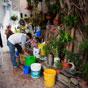 Thumbnail: Flower vendor