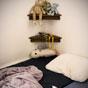 Thumbnail: Stuffed animals