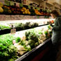Thumbnail: Picking produce