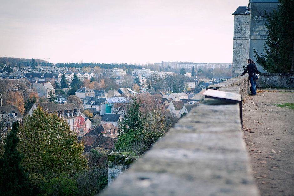 Chartres view