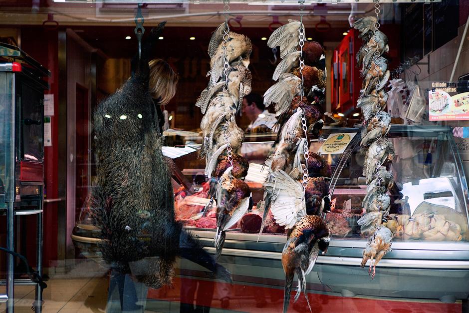 hanging animals