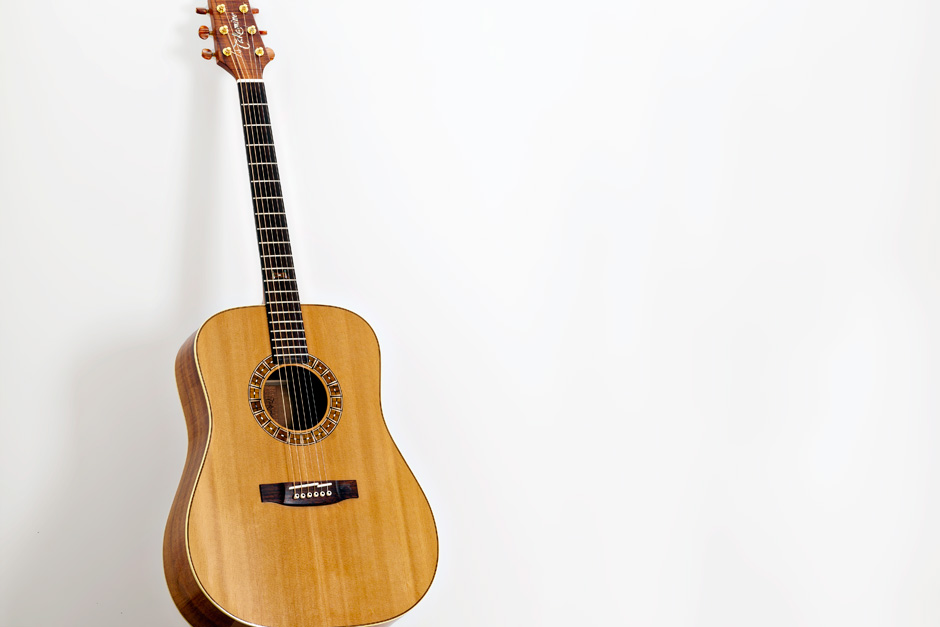 Takamine F370SS: guitar front