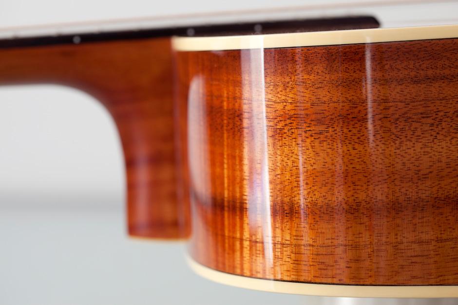 Takamine F370SS: side wood