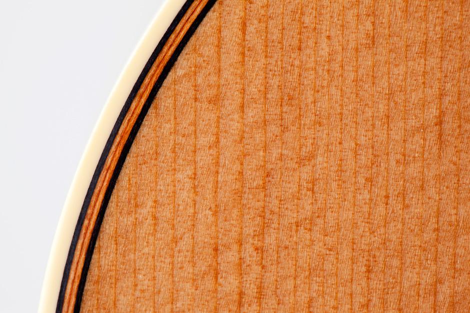 Takamine F370SS: top wood and binding