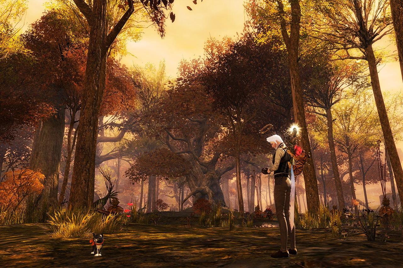 Cadem Forest in Plains of Ashford