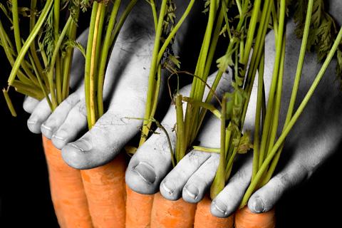 Carrot feet